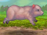 Porquinho Saltador