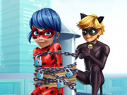 Cat Noir Resgatando a Miraculous Ladybug