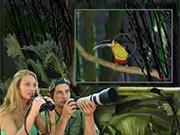 Fotografando a Selva
