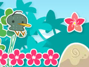 Flores e Kiwis