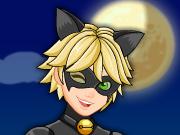 Vista Cat Noir
