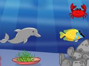 Uma casa para Golfinhos