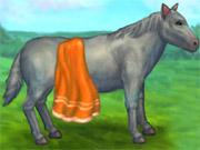 Cuidar de Cavalo