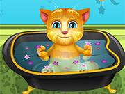 Ginger Toma Banho