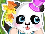 Vista esse Lindo Panda
