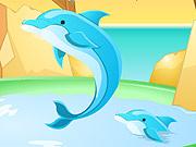 Decore o Tanque dos Golfinhos