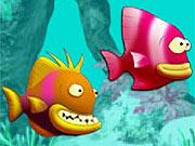 Vida de Peixe